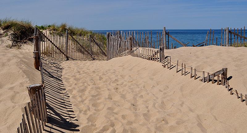 Provincetown Beach walk